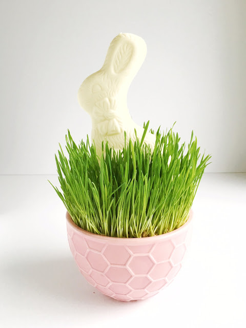 Darling Easter Grass for holiday decor...and it's REAL! Get the details over at mynameissnickerdoodle.com
