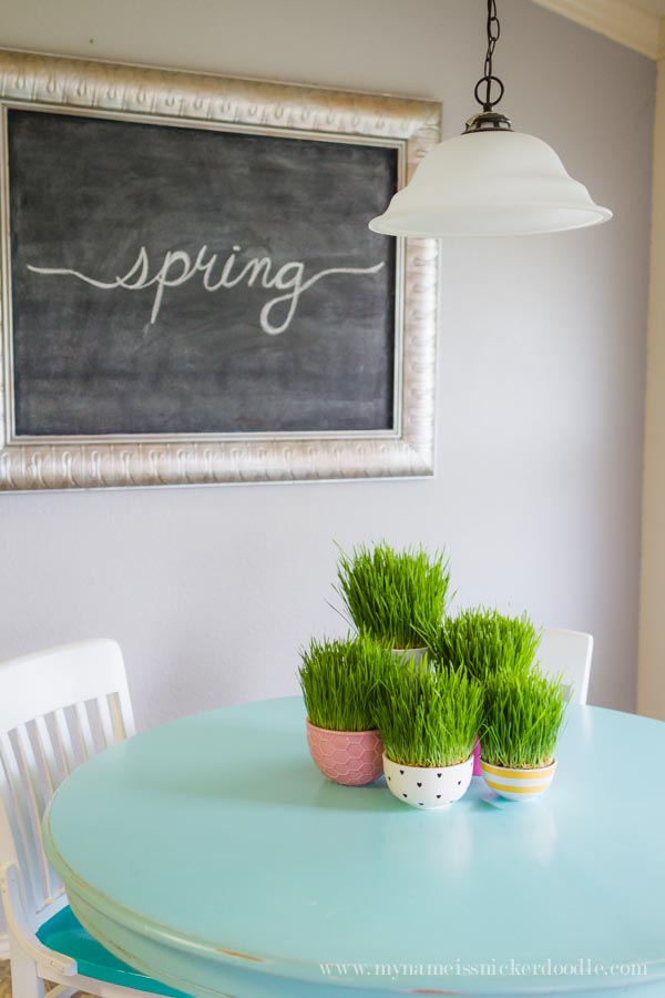 How darling is this grass decor...and it's REAL! It grows in 7 days and is absolutely too fun for spring! Get the details over at mynameissnickerdoodle.com