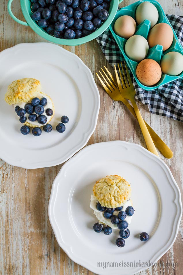 Blueberry Shortcakes topped with whipped cream and fresh blueberries!  A perfect dessert recipe for spring or summer!